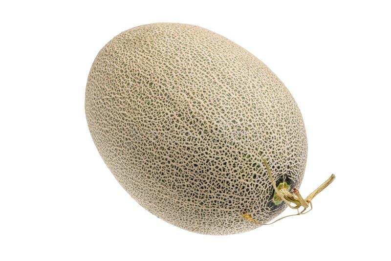 Hamigua melon sweet cantaloupe melon isolated on white backgro. Und stock photos