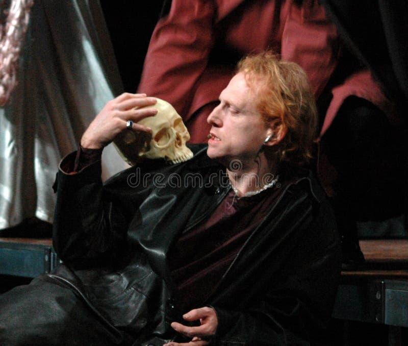 Hamlet fotografering för bildbyråer