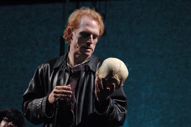 Hamlet royaltyfri fotografi