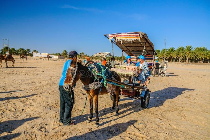 HAMMAMET, ТУНИС - октябрь 2014: Осел с тележкой в пустыне Сахары 7-ого октября 2014 стоковое изображение