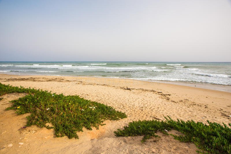 Hammamet in Tunisia. Beautiful beach by the shores of the Mediterranean sea in Hammamet, Tunisia stock photography