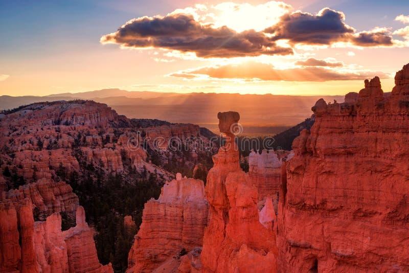 Hammare för Thor` s i Bryce Canyon National Park i Utah royaltyfri fotografi
