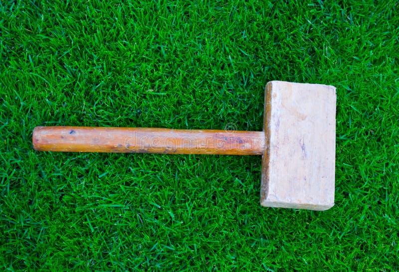 Hammer auf grünem Gras lizenzfreies stockfoto