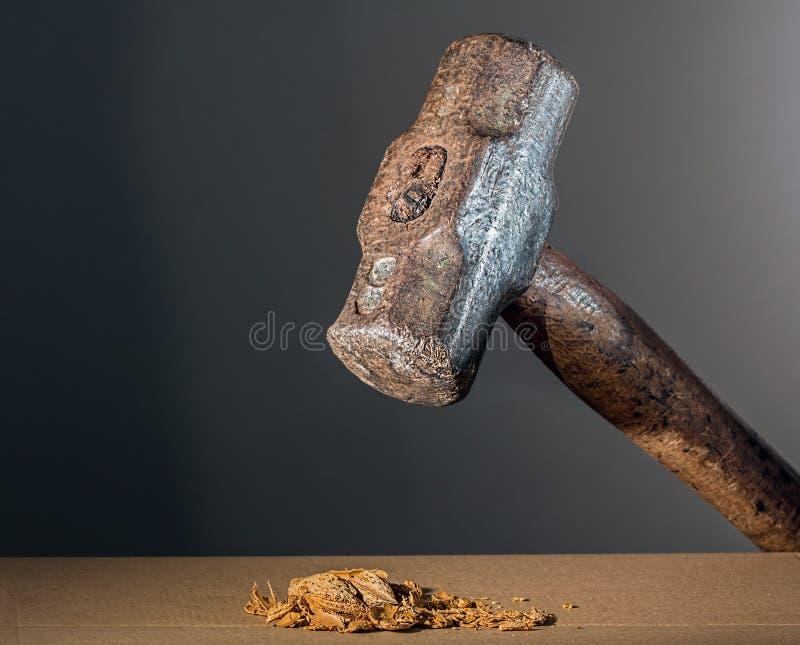Hammer Crushing Nuts Free Public Domain Cc0 Image