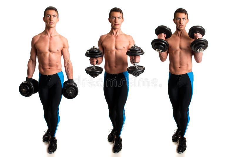 Hammer Curl Exercise. Studio composite over white stock photos