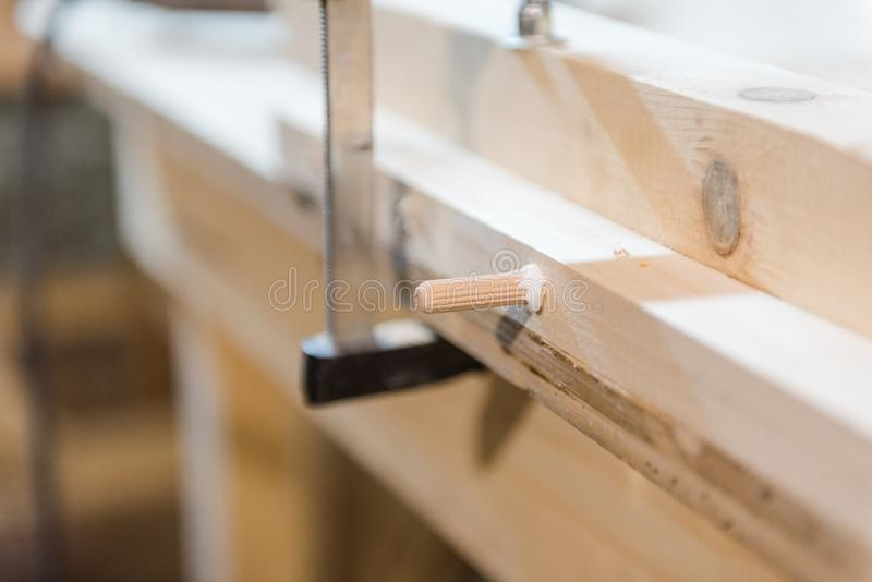 Hammer dowels in a tree. man hammer dowels into a wooden surface stock images