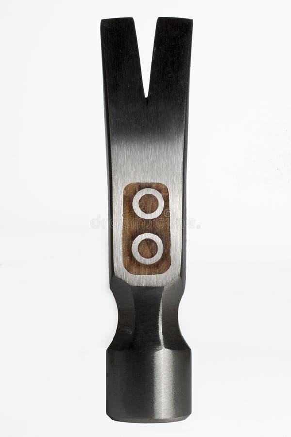 hammerhead стоковое изображение rf