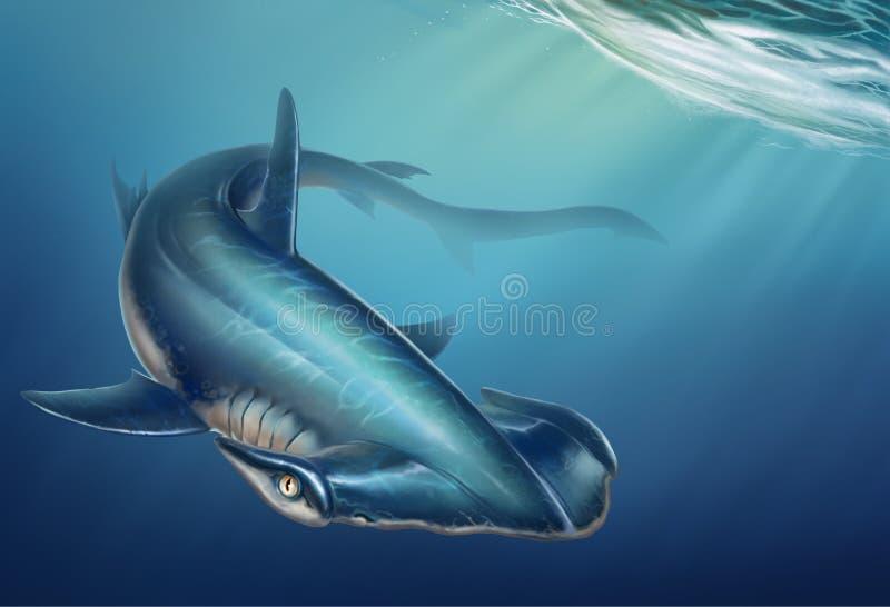 Hammerhead shark background realistic illustration on undersea stock illustration