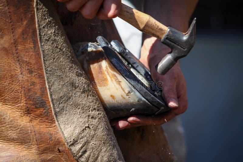 Hammering the horseshoe close up royalty free stock images