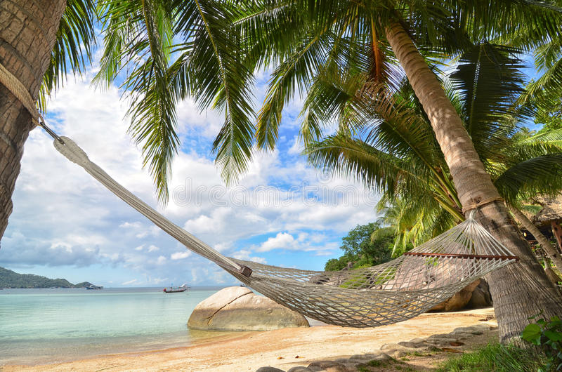 Hammock смертная казнь через повешение между пальмами на песчаном пляже и морским побережьем стоковая фотография