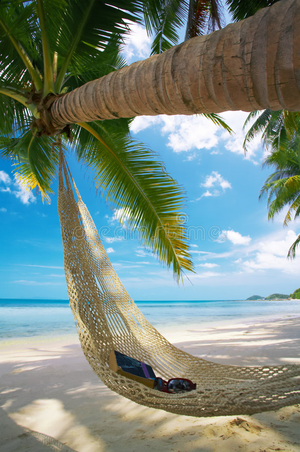 In the hammock royalty free stock image