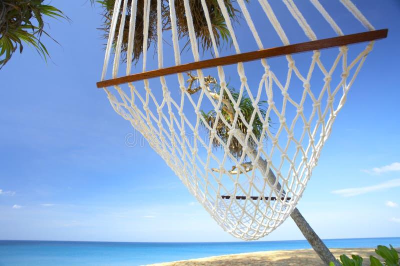 Download Hammock immagine stock. Immagine di hammock, festa, resto - 3889885