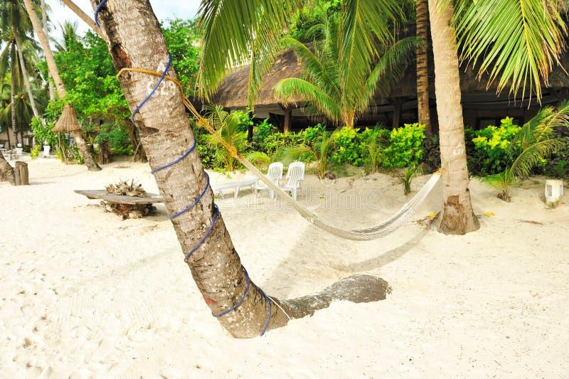 Download Hammock On Beach Royalty Free Stock Image - Image: 19000506
