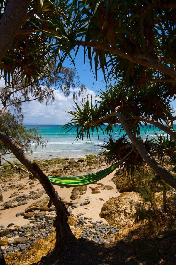 Hammock at Byron Bay Australia stock photos