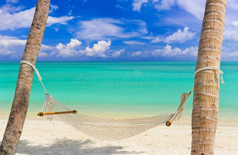 Hammock em uma praia tropical foto de stock royalty free
