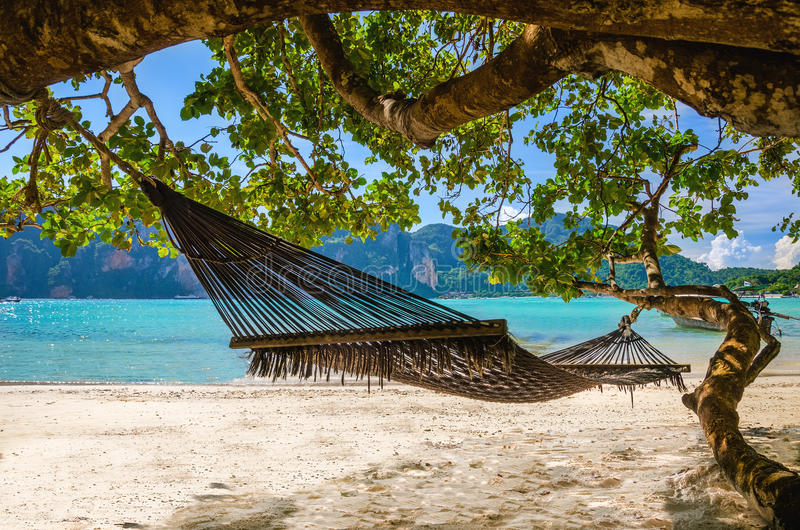 Hammock hanging under exotic tree on beach royalty free stock images