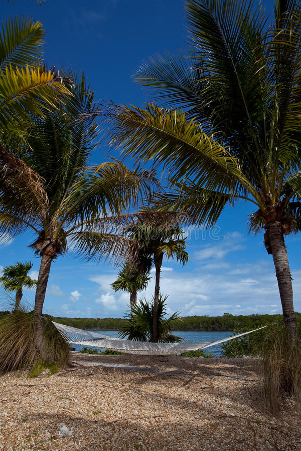 Download Hammock Overlooking Ocean stock photo. Image of real - 27897056