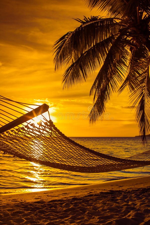 Hammock with palm trees on a beautiful beach at sunset royalty free stock photos