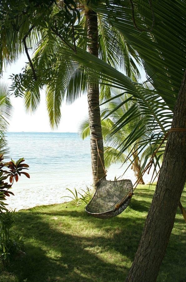 hammock on palm trees philippines beach stock image