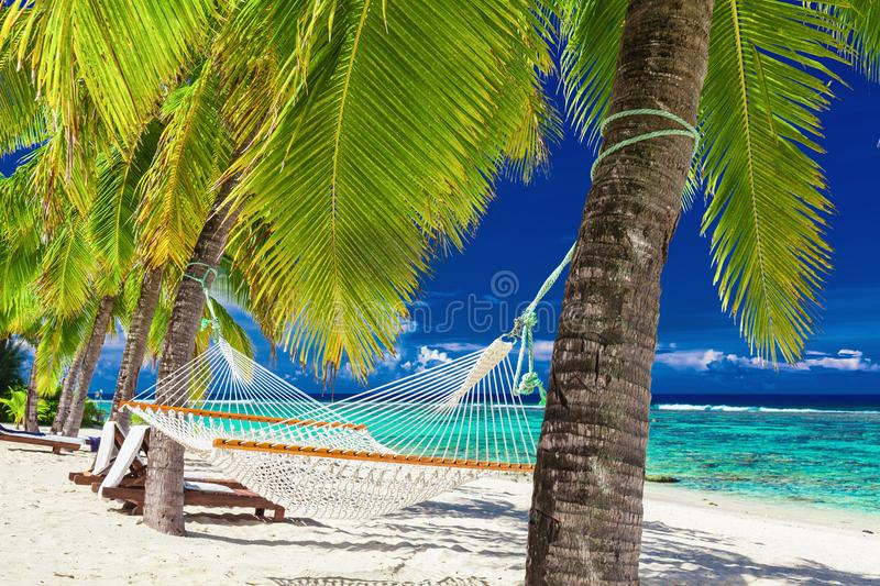 Hammock between palm trees on a tropical beach, Rarotonga, Cook. Empty hammock between palm trees on a tropical beach, Rarotonga, Cook Islands royalty free stock photography