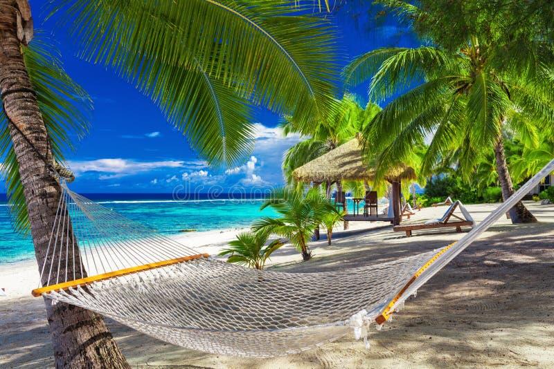 Hammock between palm trees on tropical beach of Rarotonga, Cook stock photos