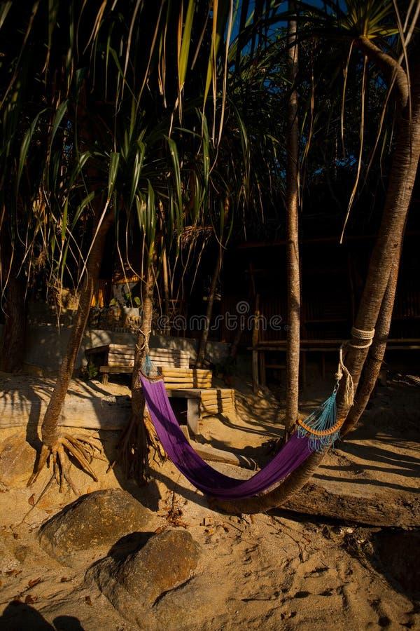 Hammock que fronteia a praia tropical isolado do bungalow imagens de stock