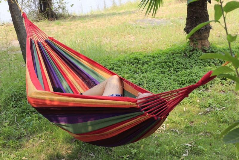 Download Hammock stock photo. Image of sleep, happiness, tablet - 34389906