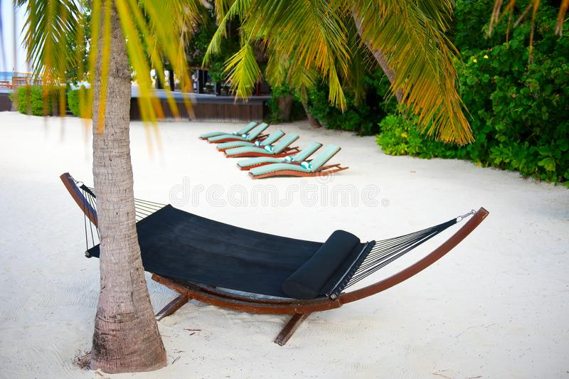 Hammock on sand near palm on the seashore on tropical luxury island resort stock image