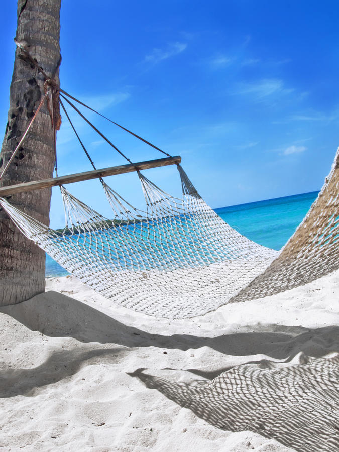 Hammock at the tropical beach. Sunny day royalty free stock image