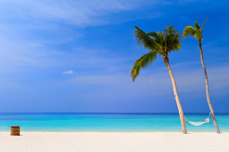 Download Hammock On A Tropical Beach Stock Image - Image of beach, beauty: 9457245