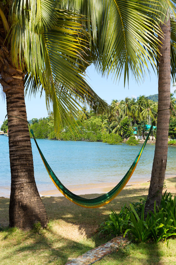 Download Hammock On A Tropical Beach Royalty Free Stock Images - Image: 31768529