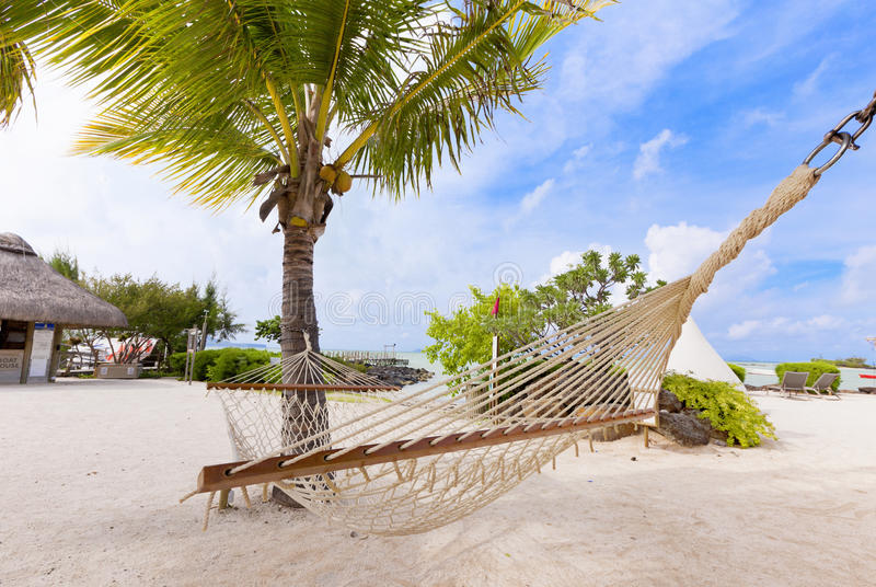 Hammock on tropical beach with palm leaf thatch roofing umbrellas and palm trees in the background. Luxurious vacations on Mauritius, honneymoon tropical island royalty free stock image