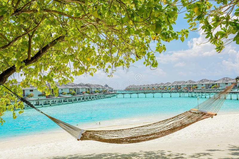 Hammock at the tropical beach with water bungalows at background royalty free stock photo