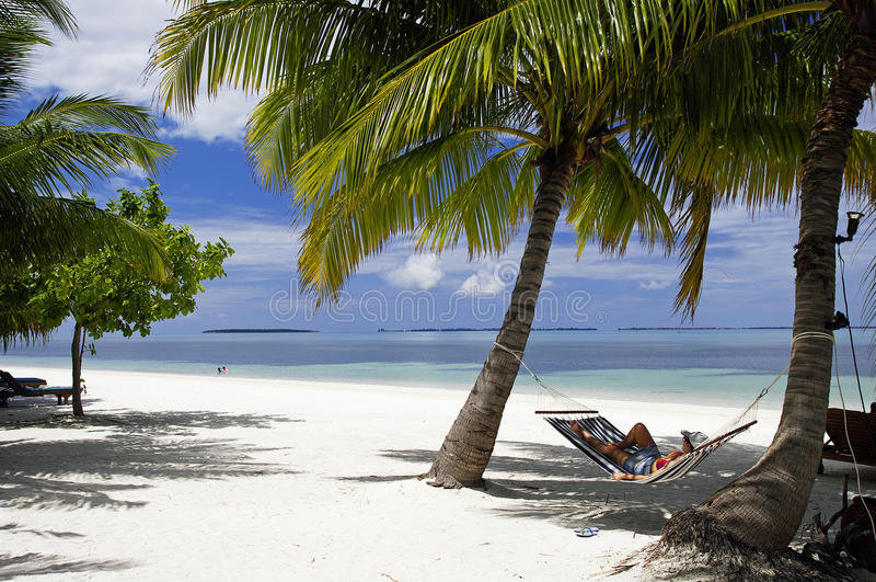 Hammock On Tropical Beach With Palm Leaf Thatch Roofing