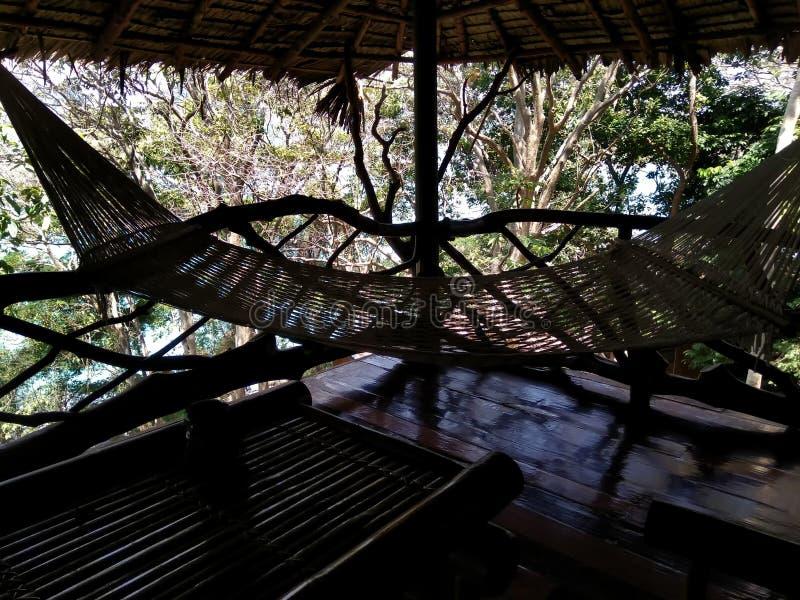 Hammock on tropical resort royalty free stock image