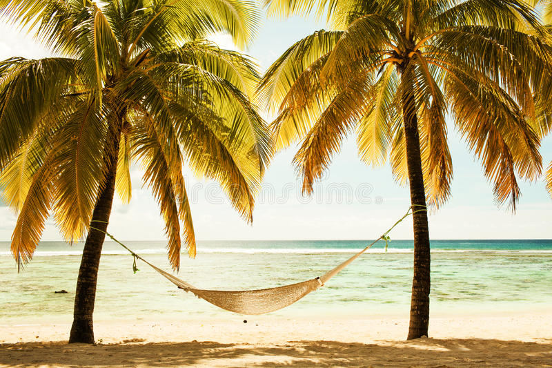 Hammock between two palm trees on the beach during sunset, cross royalty free stock images
