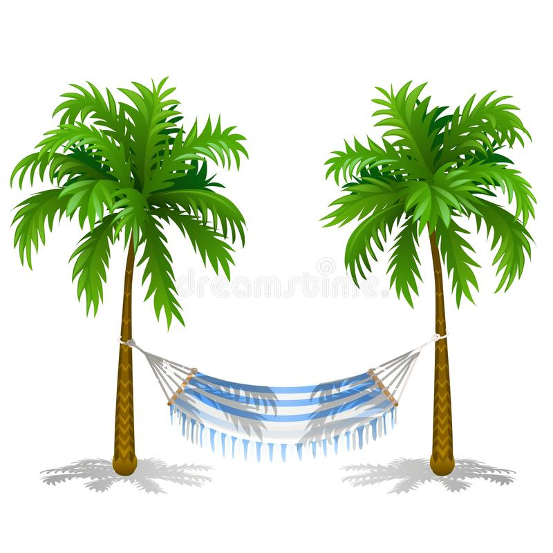 Hammock between two palm trees isolated on white background. Service on the beach. Vector cartoon close-up illustration. royalty free illustration