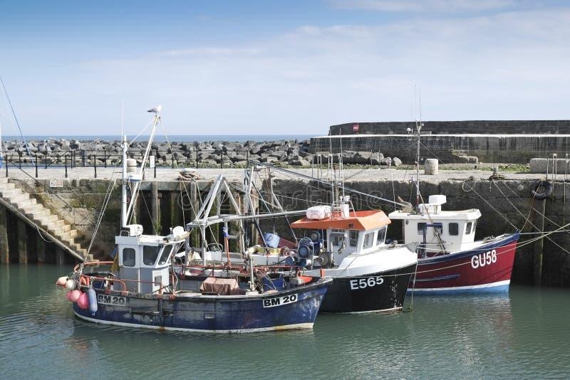 Hamn för fiskebåtLyme fjärd royaltyfri bild