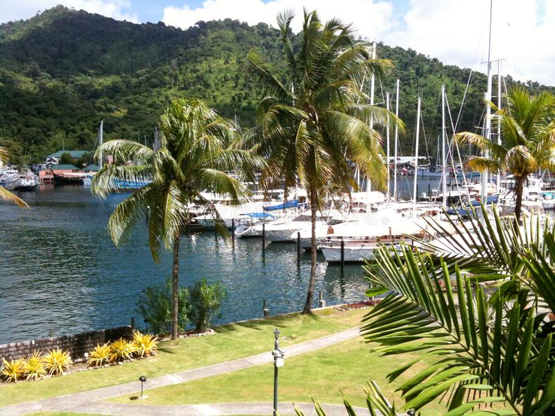 Hamn i Chaguaramas, Trinidad arkivbilder