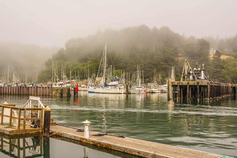 Hamn i Fort Bragg, Kalifornien royaltyfri bild