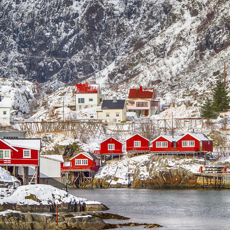 Hamnoy and Reine Villages Houses of Lofoten Islands in Norway. Red Wooden Traditional Huts Use Built With One End Of Pole in Water. Hamnoy and Reine Villages stock images