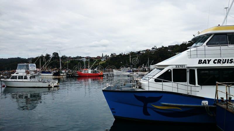 Hamnplats @ Eden, Australien fotografering för bildbyråer