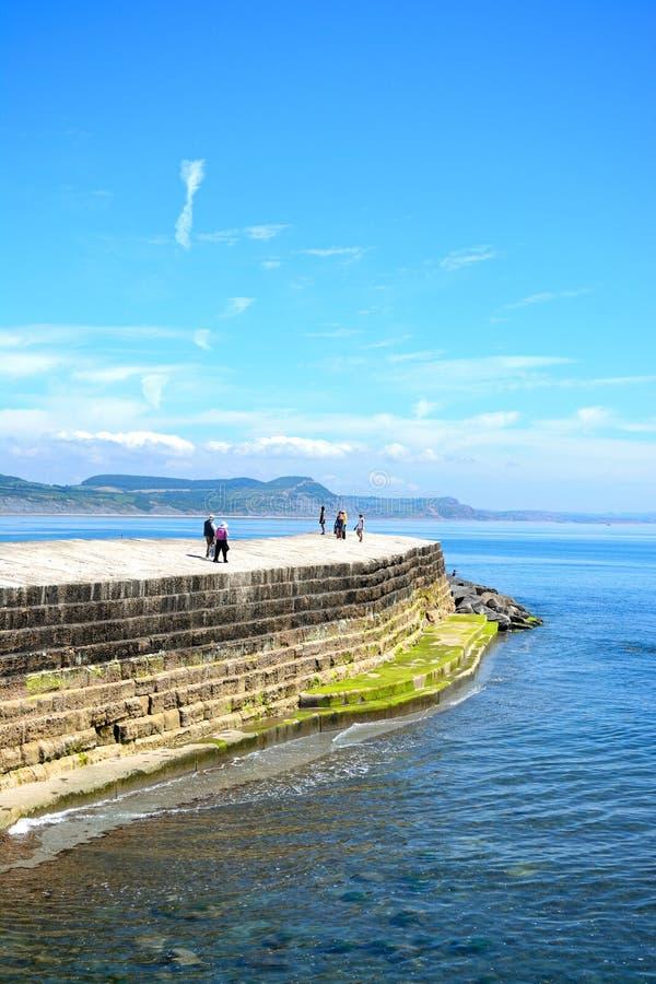 Hamnvägg, Lyme Regis arkivfoto