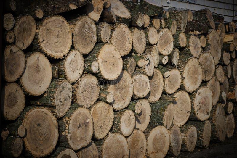 Hampa för jobb på trä arkivbilder