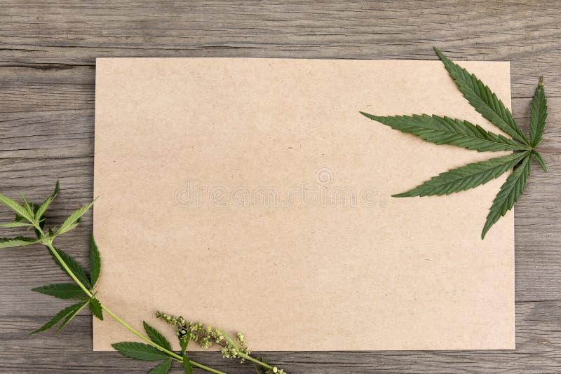 Hampasidor och blommor med tomt papper för hantverk på träbakgrund för gammal grunge Top beskådar Minimalistic modell royaltyfri bild