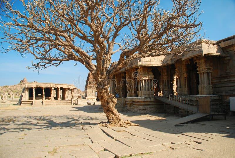 Hampi, Vitthala temple, India stock images