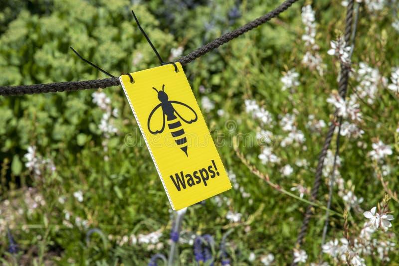 Warning notice of wasps flying around stock photos