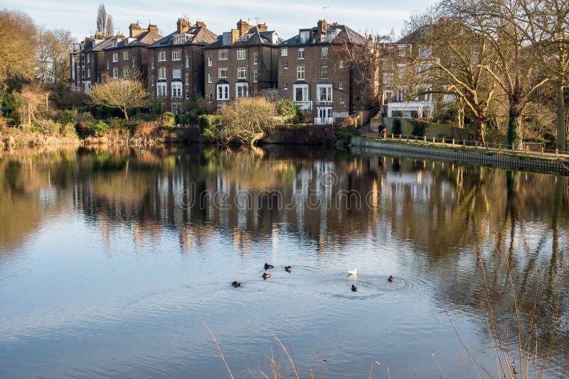 HAMPSTEAD LONDON/UK - DECEMBER 27: Rad av hus vid en sjö på arkivfoto