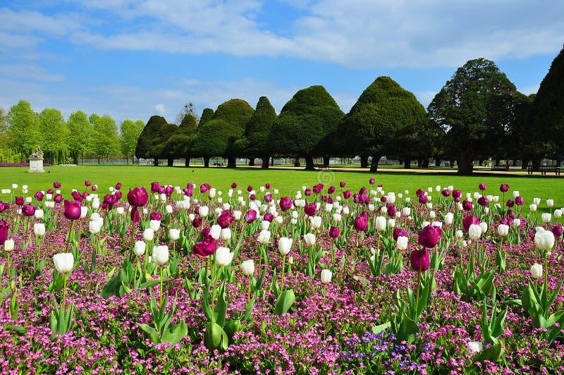 Hampton Court-tuin in de lente, Londen, het UK royalty-vrije stock fotografie