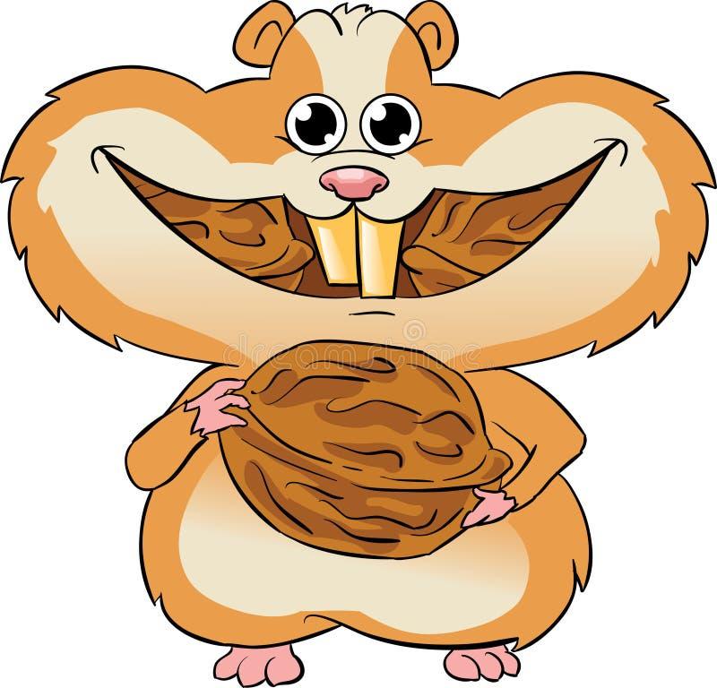 Hamster, der Walnüsse isst stock abbildung